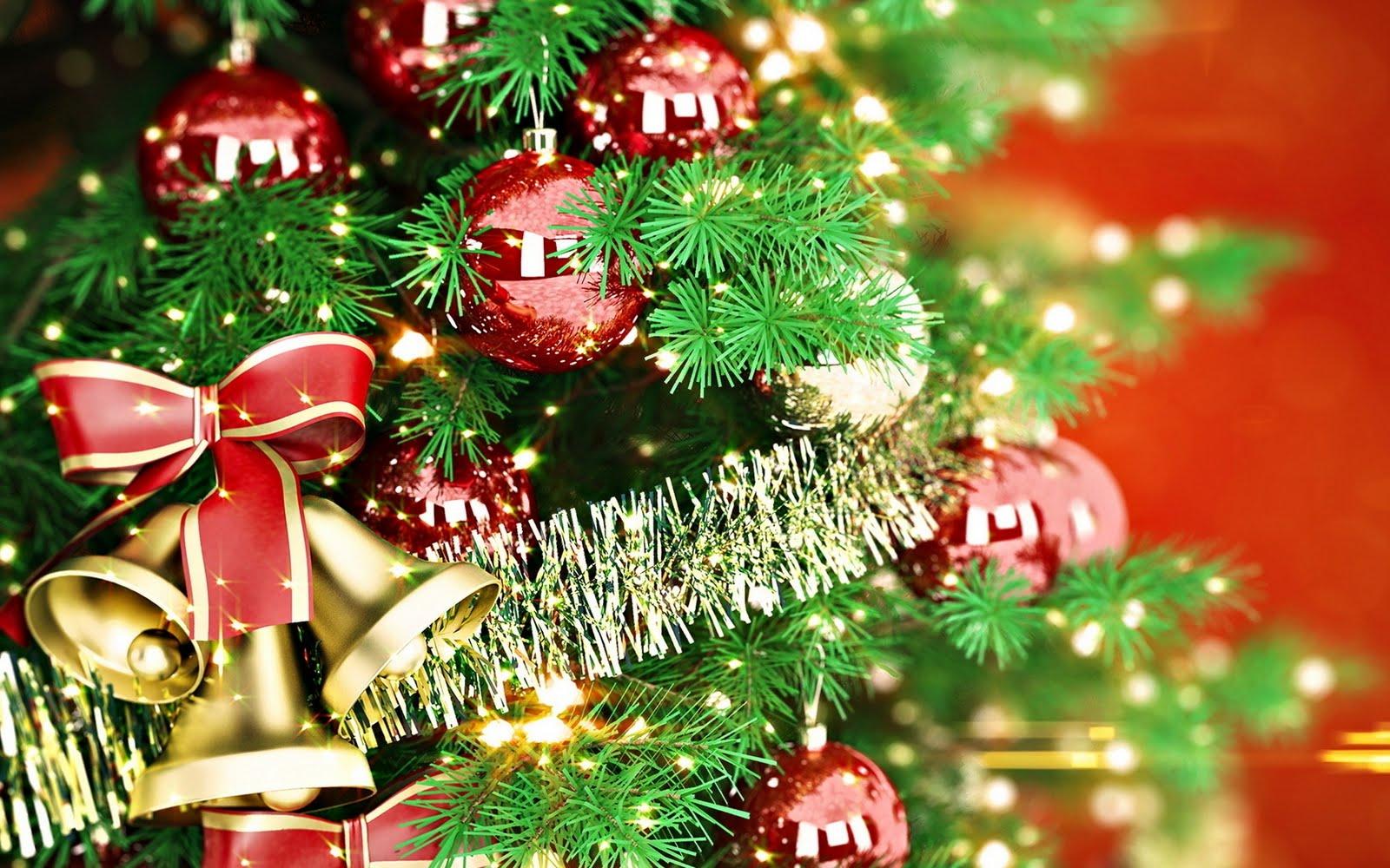 Bendici n del rbol navide o el salvador misionero - Arbol tipico de navidad ...