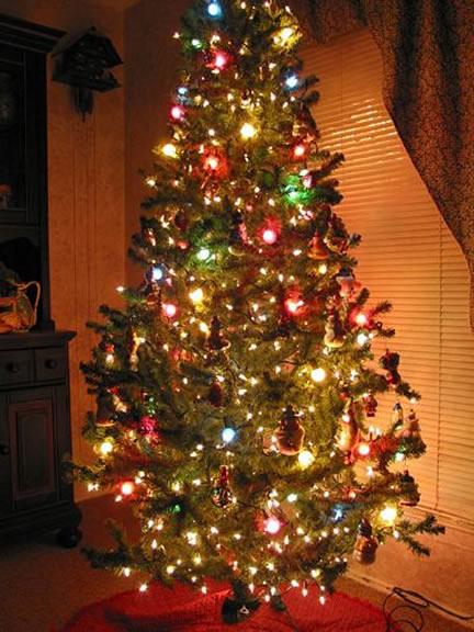y el arbolito de navidad ojal que est muy cerca del pesebre en un lugar donde no impida el trnsito cotidiano de la familia